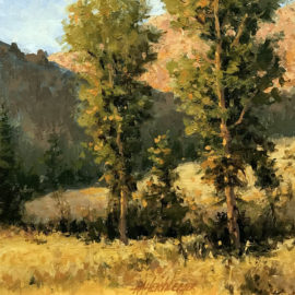 wyoming_cottonwoods-dick_heichberger-legacy_gallery-thumb